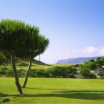 Oitavos Golf Resort