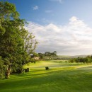 Sheraton Golf Fota Island Resort